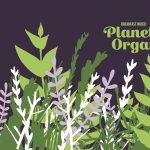 Breakfast in Bed: Planet Organic