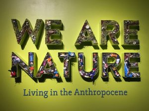 We Are Nature Programming Workshop