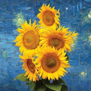 Summer Show: Van Gogh in Bloom