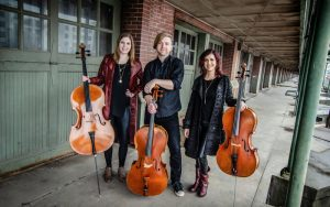 Summer Acoustic Music Series: Cello Fury