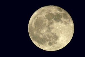 Moon Mondays