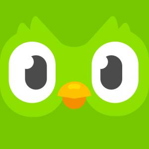 Duolingo Artist Lecture