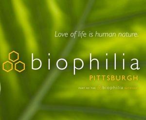 Biophilia: Pittsburgh February Meeting