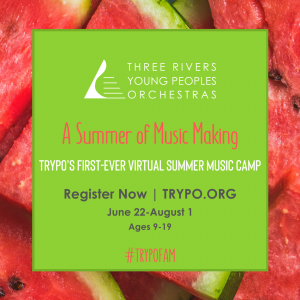 TRYPO Virtual Summer Music Camp